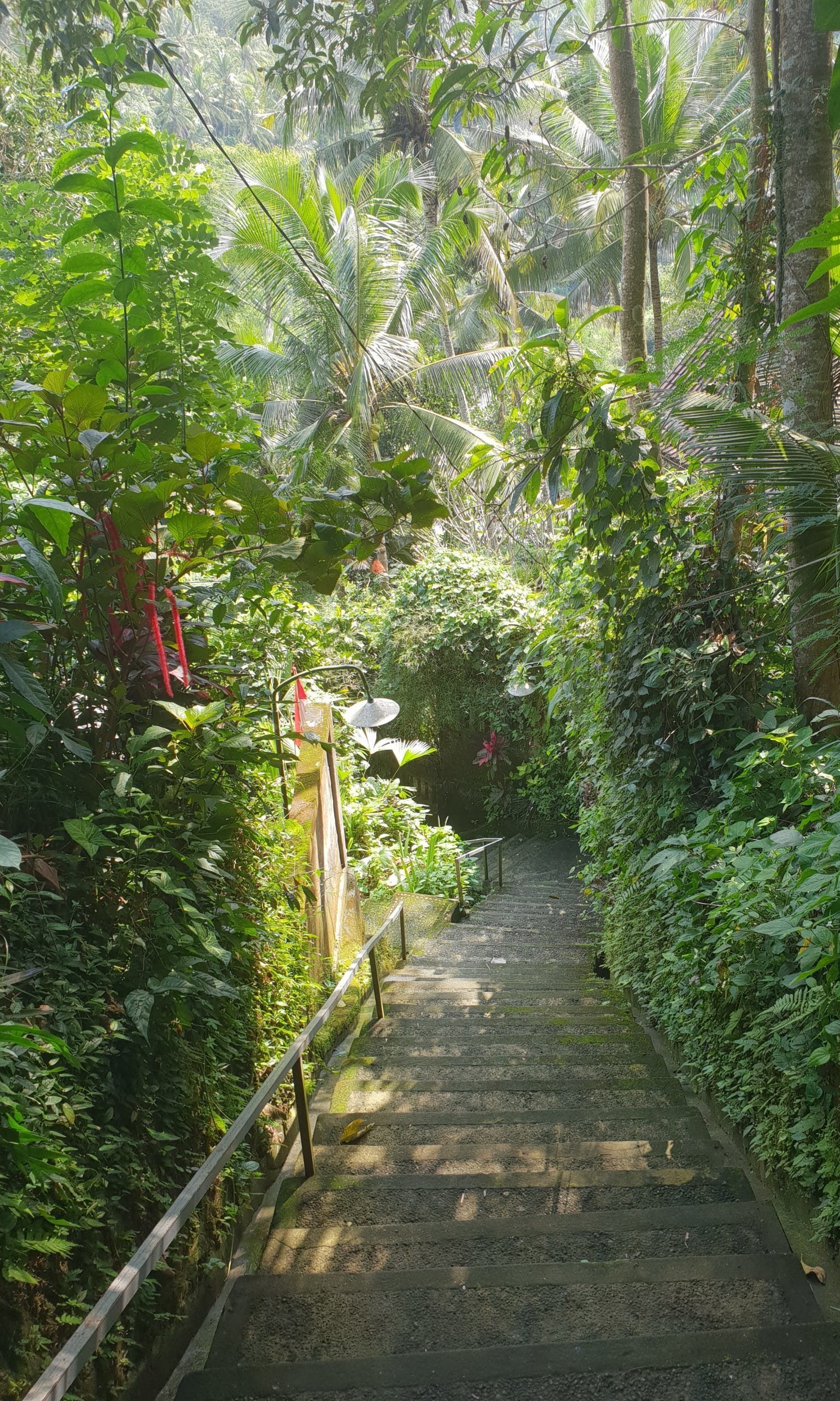 Access to the Ayung River and Temple
